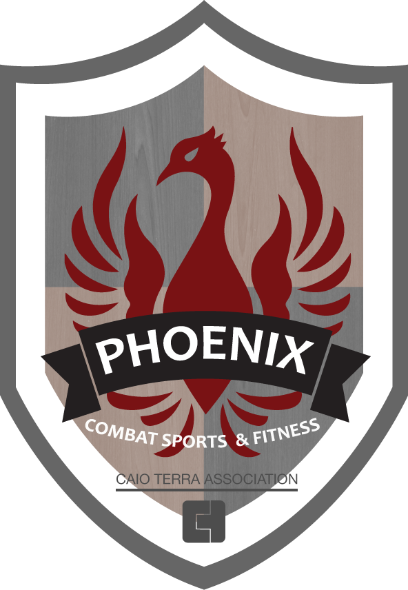 PhoenixShield_FINAL2